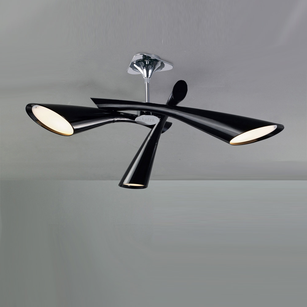 Stunning Black Ceiling Lights