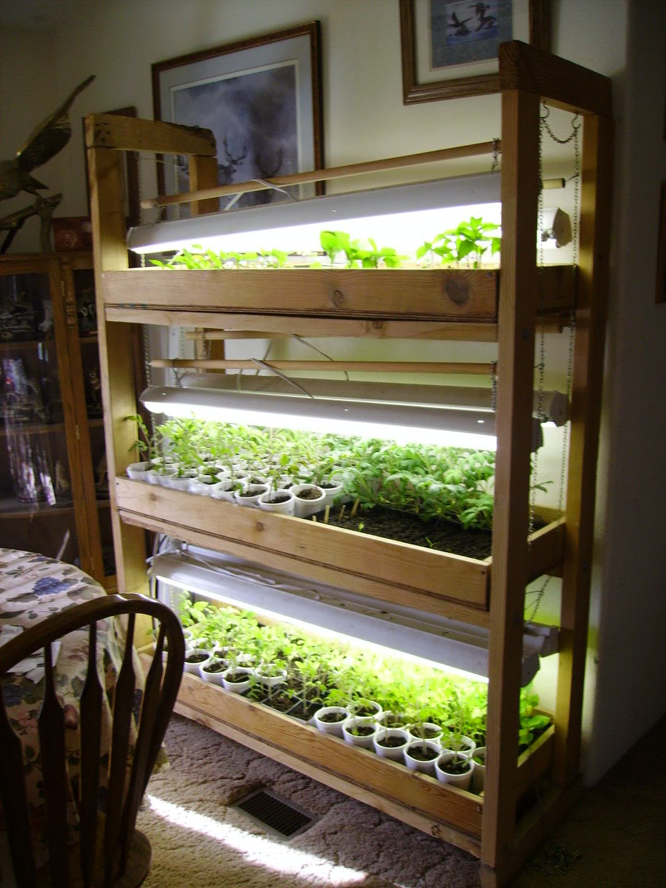 Useful Cheap Grow Lights