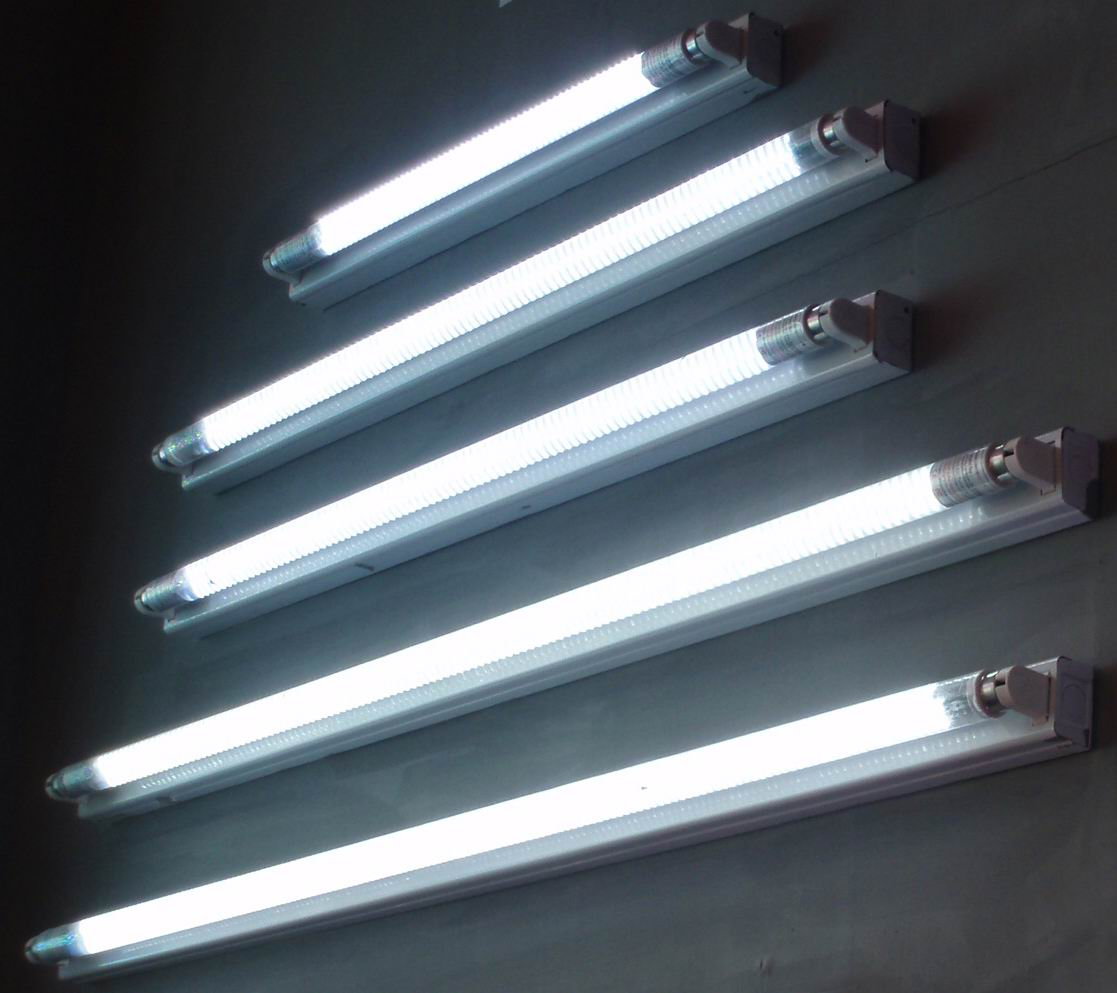 Multi Size Fluorescent Lighting