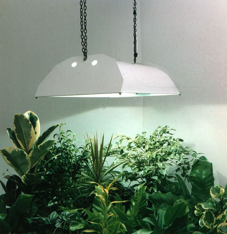 Effective Grow Lights