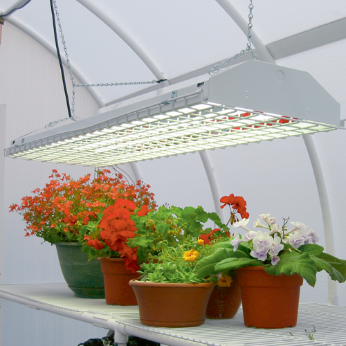 Neat Indoor Grow Lights