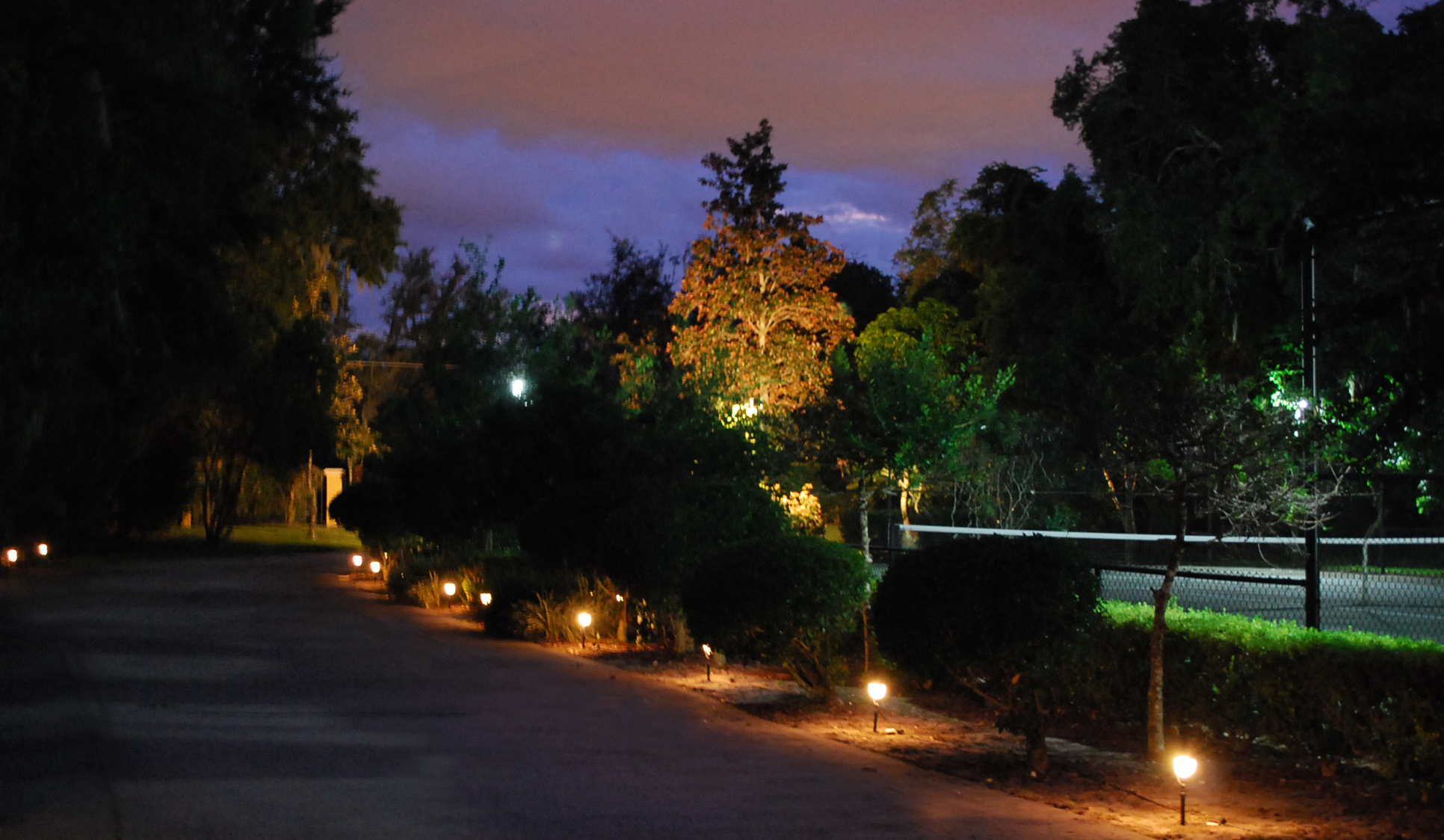 Delicate Low Voltage Landscape Lighting