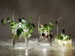 Dazzling Plant Grow Lights