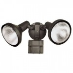 Rounded Security Lights