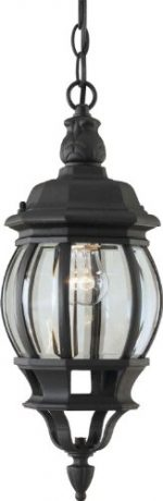 Forte Lighting 1702-01-04 Traditional 1-Light Exterior Hanging Lantern with Clear Beveled Glass, Black Finish